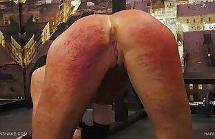 लक्जरी वेश्या में मोज़ा चूसना बिल्ली और सभी सेक्सी पिक्चर भेजो वीडियो में छेद